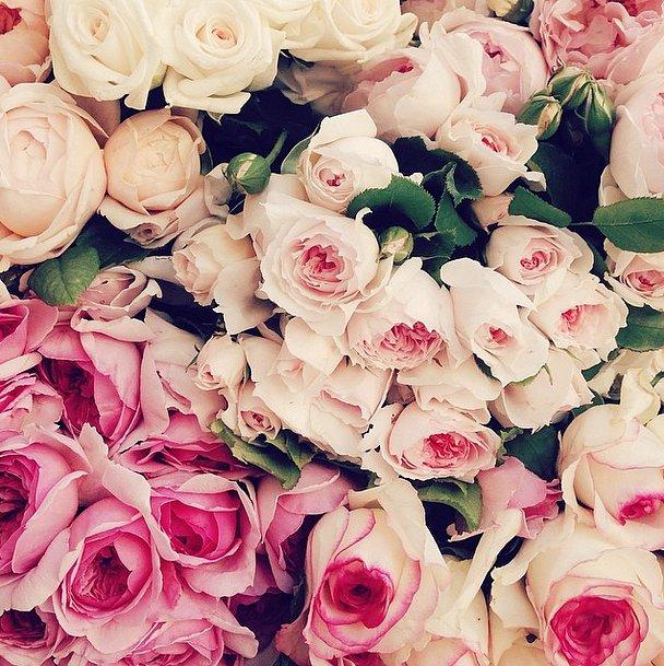Need Bridal Shower Inspiration Take A Peek At Lauren Conrad's Girly Wedding Shower 5