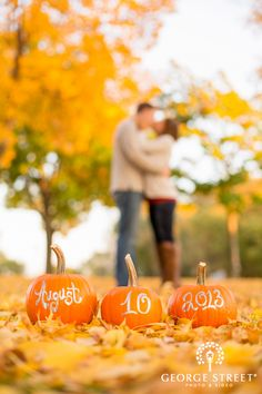 20 Fall Save The Date Ideas For Your Autumn Wedding